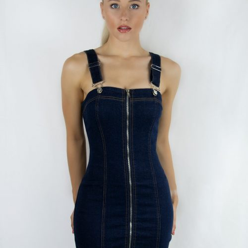 Denim Zip Through Dress